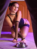 Eve Angel in fishnet stockings